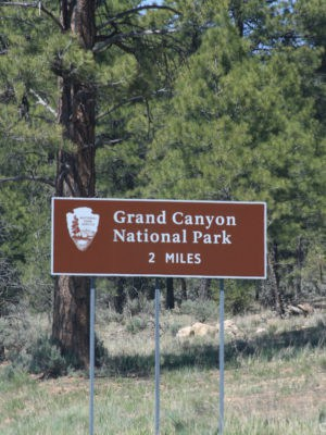 Moosey's Vacation to Grand Canyon – Part 1