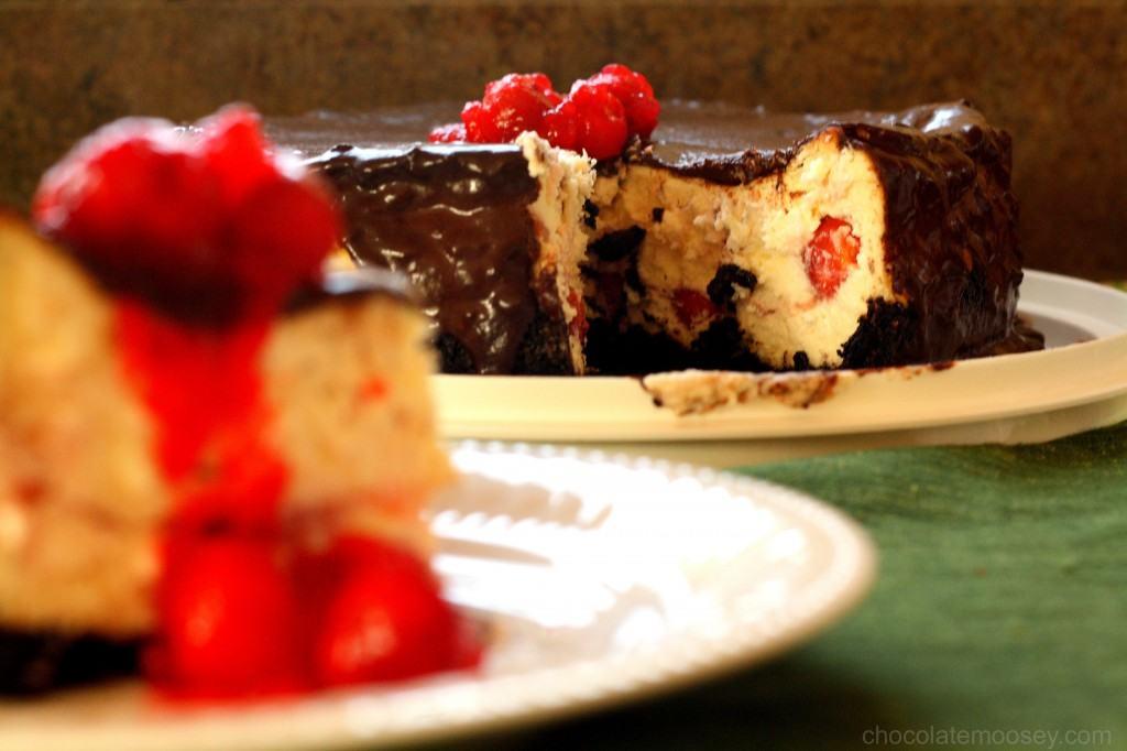 Chocolate Cherry Cheesecake - Chocolate Moosey