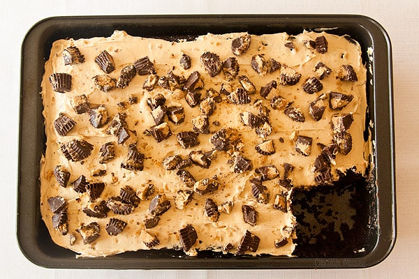 Chocolate Peanut Butter Cake with peanut butter frosting