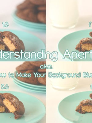 Understanding Aperture (a.k.a How To Make Your Background Blurry)