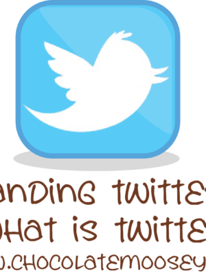 Understanding Twitter Part 1: What is Twitter?