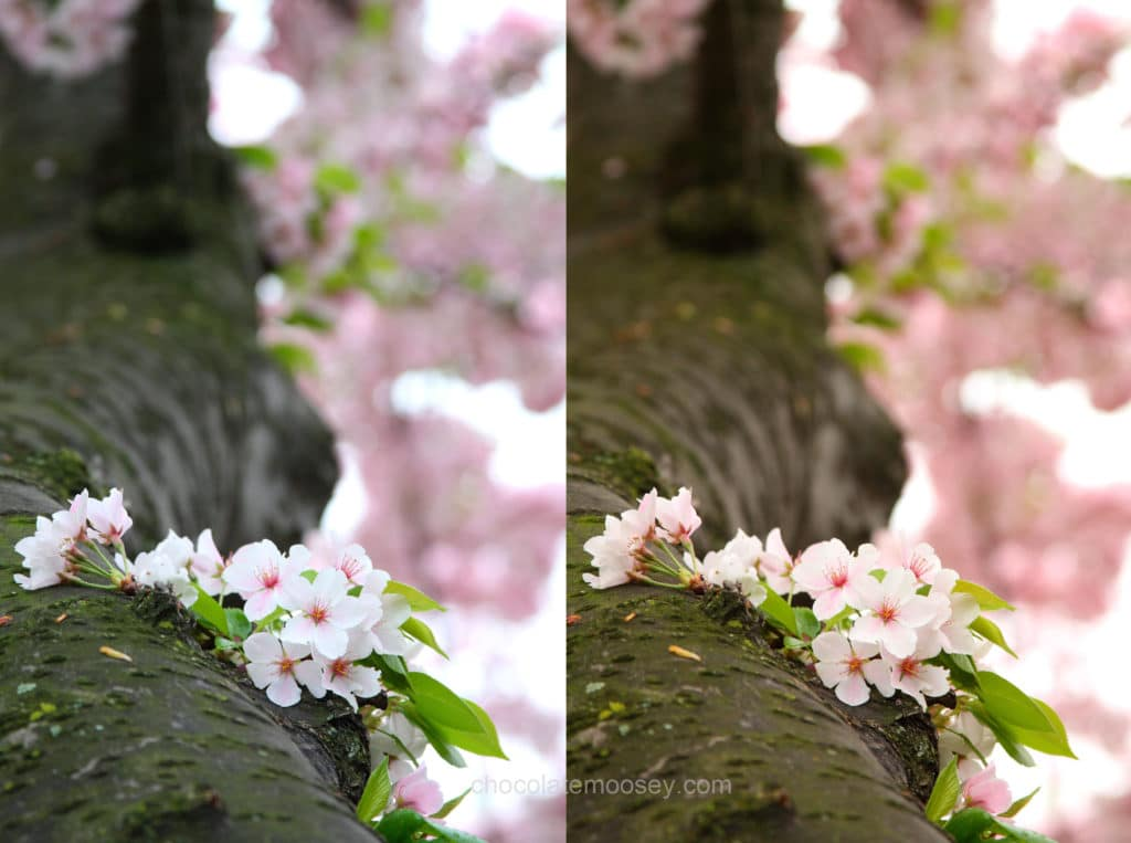 How To Customize White Balance