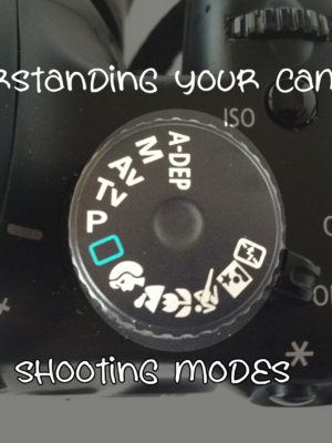 Understanding Your Camera – Shooting Modes