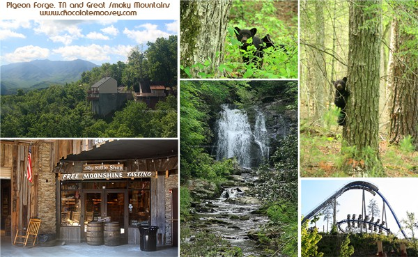 Pigeon Forge, TN and Great Smoky Mountains | www.chocolatemoosey.com