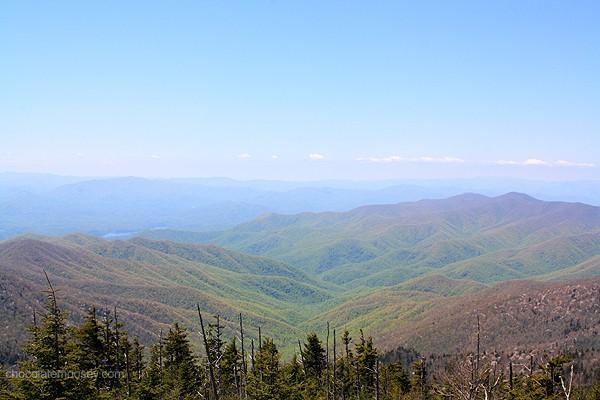 Great Smoky Mountains National Park | www.chocolatemoosey.com