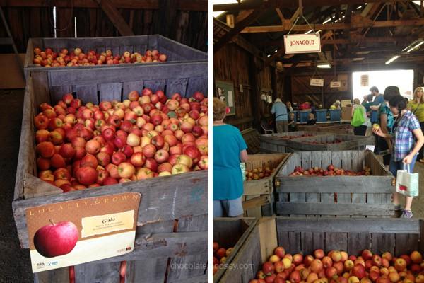 Delmont Apple Festival
