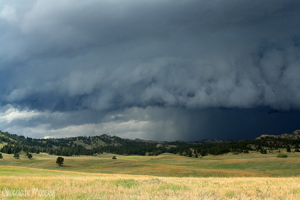 Storm at Custer State Park