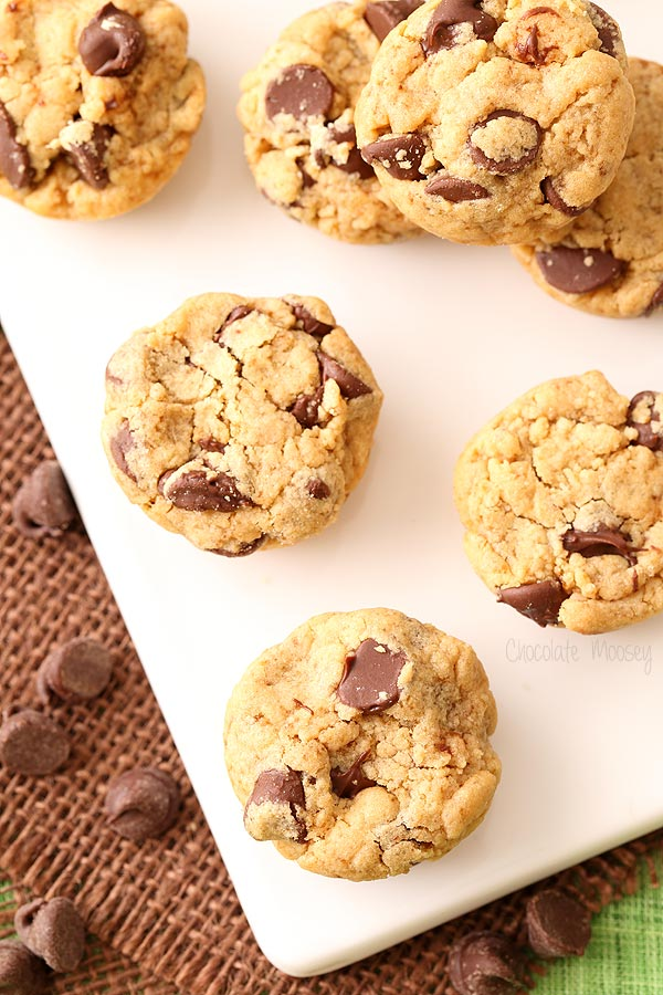 Peanut Butter Chocolate Chip Cookie Bites for Chocolate Peanut Butter Day