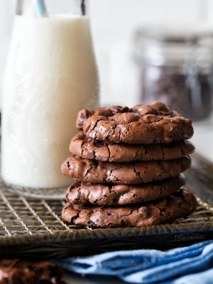 Chewy and Fudgy Small Batch Flourless Chocolate Cookies made with leftover egg white