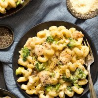 Chicken Broccoli Alfredo Mac And Cheese