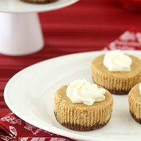 Mini Gingerbread Cheesecakes