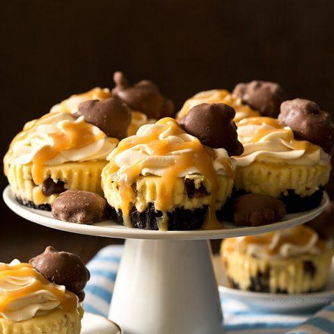 Small Batch Mini Caramel Cheesecakes