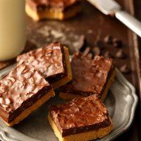 Small Batch No Bake Chocolate Peanut Butter Bars