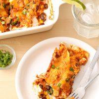 Salsa Chicken Enchiladas