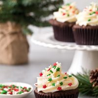 Small Batch Chocolate Gingerbread Cupcakes